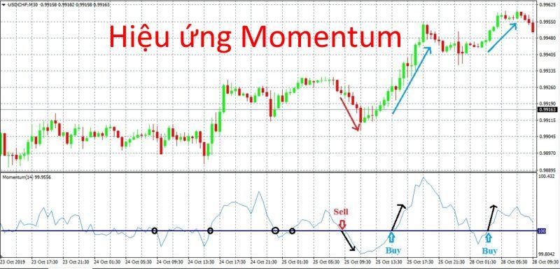 Hiệu ứng Momentum và danh mục đầu tư, mô hình định giá tài sản, chứng khoán Việt Nam